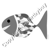 fish in grey